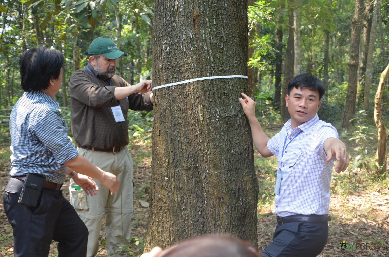 BioEcoN team measuring tree